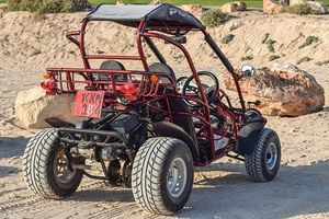 Off Road Buggy - 63818 types