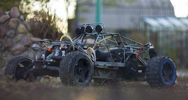 Off Road Buggy - 31742 species