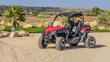 Off Road Buggy - 80021 bestsellers