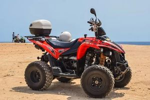 Rent A Buggy - 95699 discounts