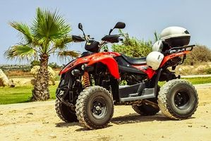 Rent A Buggy - 89942 bestsellers