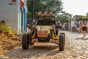 Trike Excursion - 93260 news