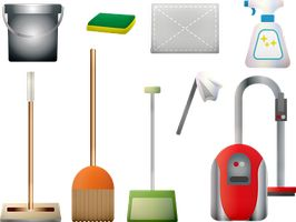 End Of Tenancy Cleaning Services - 58504 species